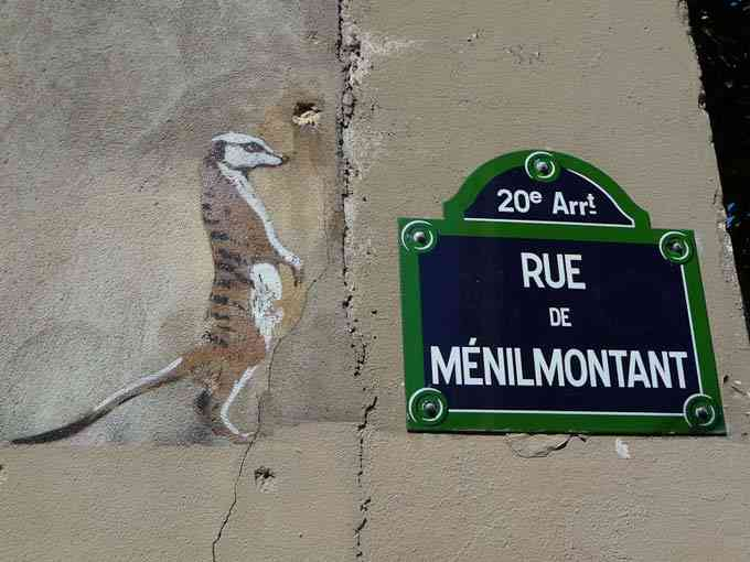 """Paris-2009-Suricate"""